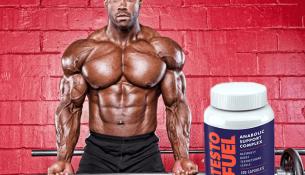 testofuel body building