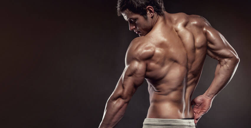 best bodybuilding supplements for men