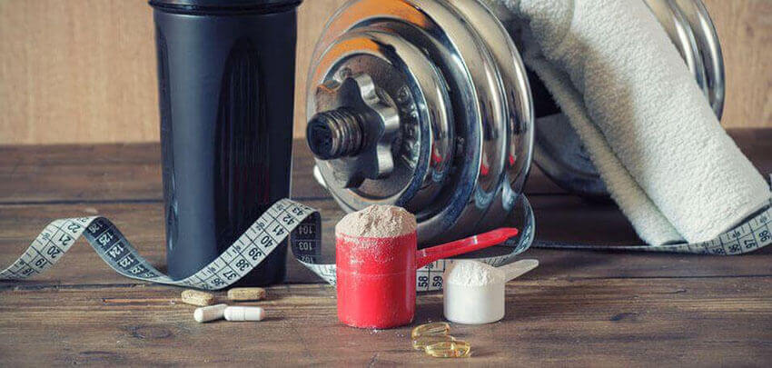 carnitine for muscle gain