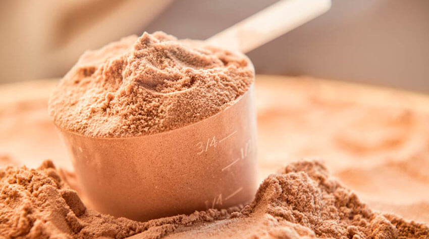 protein powder muscle building supplement